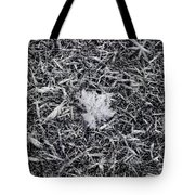 1m9343-ice Crystals On Black Ice, Tetons Tote Bag