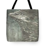 Ice Flow 17 Tote Bag