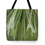 Ice Formation Tote Bag