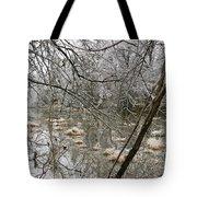 Ice Pond Tote Bag