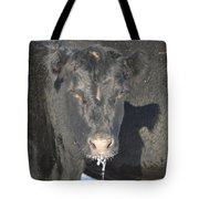 Iced Beef Tote Bag by Bonfire Photography