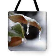 Iced Magnolia Tote Bag