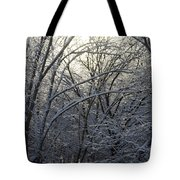 Iceshine Tote Bag