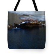 Icy Blues Tote Bag