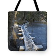 Icy Boardwalk Tote Bag