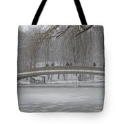 Icy Central Park Tote Bag