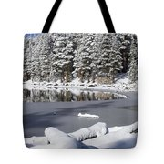 Icy Cold Tote Bag