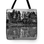 Icy Pond Reflects Tote Bag by Frozen in Time Fine Art Photography