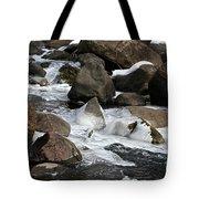 Icy Rapids Tote Bag