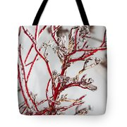 Icy Red Dogwood Tote Bag