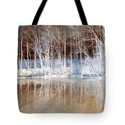 Icy Reflections Tote Bag