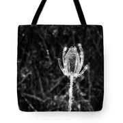 Icy Thistle In Monochrome Tote Bag
