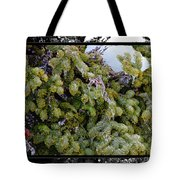 Icy Trees With Black And White Border Tote Bag