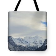 Icy View Tote Bag