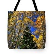 Idaho Autumn Colours Tote Bag