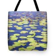 Idyllic Pond Tote Bag