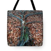 If A Tree Falls In The Woods Tote Bag