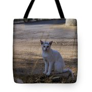 If Cats Could Talk Tote Bag