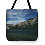 If I Spent Forever Here Tote Bag