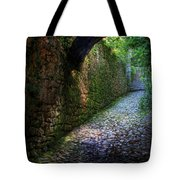 If Stones Could Talk Tote Bag