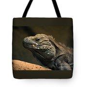 Iguana-7374 Tote Bag