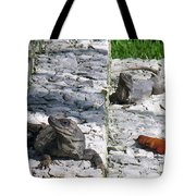 Iguana Bask In The Sun With You Tote Bag