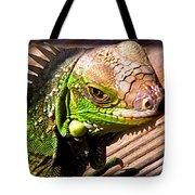 Iguana On The Deck At Mammacitas Tote Bag