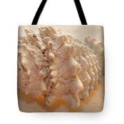 Illumination Series Sea Shells 11 Tote Bag