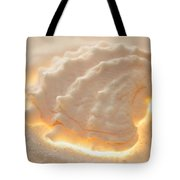 Illumination Series Sea Shells 16 Tote Bag