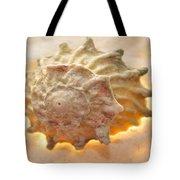 Illumination Series Sea Shells 20 Tote Bag