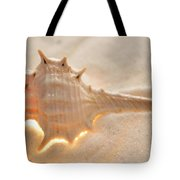 Illumination Series Sea Shells 6 Tote Bag