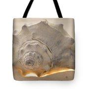 Illumination Series Sea Shells 7 Tote Bag