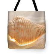 Illumination Series Sea Shells 8 Tote Bag