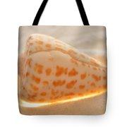 Illumination Series Sea Shells 9 Tote Bag