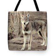Illusion Of A Wolf Tote Bag