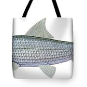 Illustration Of A Bonefish Albula Tote Bag by Carlyn Iverson