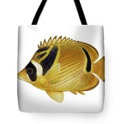 Illustration Of A Raccoon Butterflyfish Tote Bag by Carlyn Iverson