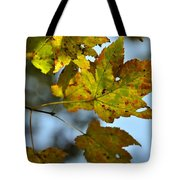 Ilovefall Tote Bag by JAMART Photography