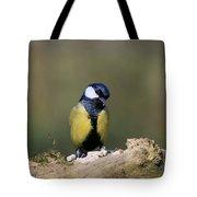 I'm A Shy Bird Tote Bag