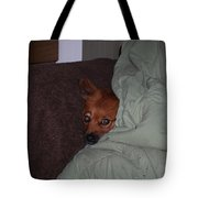 I'm Cold Tote Bag