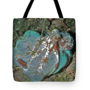 I'm Feeling Blue Tote Bag