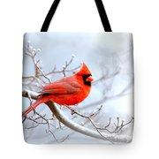 Img 2259-22 - Northern Cardinal Tote Bag
