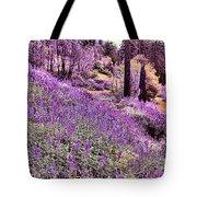 Img 4892_ Purple Lupine_ Yosemite National Park  Tote Bag