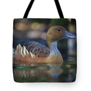 Img_8931 Fulvous Whistling Duck Tote Bag