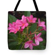 Immaculate Pink Plumerias Tote Bag
