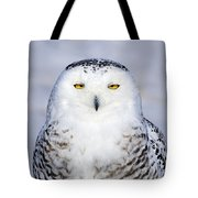 Immaculate Tote Bag