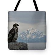 Immature Eagle And Alaskan Mountain Tote Bag