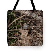 Immature White-throated Sparrow Tote Bag