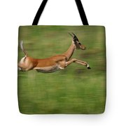 Impala  Running And Leaping Tote Bag