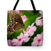 Impatient Swallowtail Tote Bag